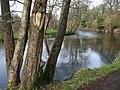Camowen River, Cranny, Omagh - geograph.org.uk - 1196601.jpg