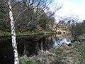 Camowen River - geograph.org.uk - 1777733.jpg