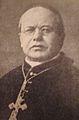 Cardinal Boggiani.JPG