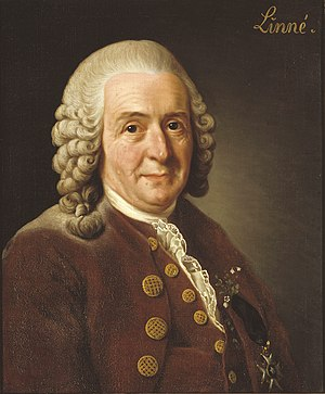 10th edition of Systema Naturae - An oil painting of Carl Linnaeus by Alexander Roslin in 1775
