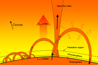 Flux tube - Diagram of coronal loops that consist of plasma confined to magnetic flux tubes.