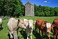 Castles of Connacht Feartagar, Galway.jpg