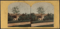 Central Park, arch over Bridal Path, by Chase, W. M. (William M.), ca. 1818-1901.png
