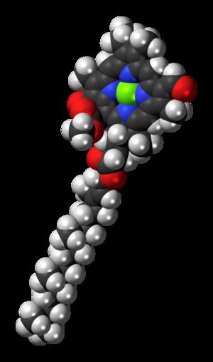 Chlorophyll d - Image: Chlorophyll d 3D spacefill