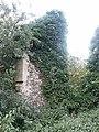Church Ruins, Westley (2) - geograph.org.uk - 922100.jpg