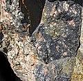 Clast-rich impact pseudotachylite (Sudbury Breccia, Paleoproterozoic, 1.85 Ga; Windy Lake Northwest roadcut, Sudbury Impact Structure, Ontario, Canada) 12 (46819355615).jpg