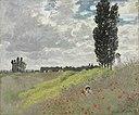 Claude Monet - A Walk in the Meadows at Argenteuil - 1998.107 - Rhode Island School of Design Museum.jpg