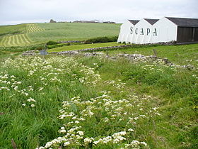 Image illustrative de l'article Scapa (distillerie)