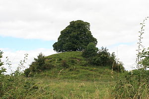 Hugh de Lacy, Lord of Meath - Motte-and-bailey built by de Lacy at Clonard, County Meath