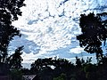 Clouds at Thrithala.jpg