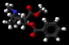 Wiki Kokain