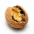 Cocoon (16716812382).jpg