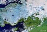 Cold Turkey ESA415078.tif