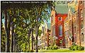 College row, University of Vermont, Burlington, Vt (67642).jpg