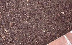 definition of mulch
