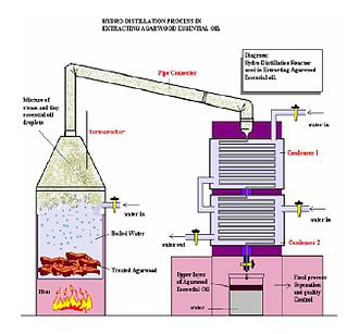 Hydro-Distillation Process in Extracting Of Agarwood Essential Oil. Condensers.jpg