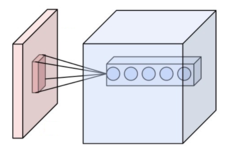 Convolutional neural network - Wikipedia