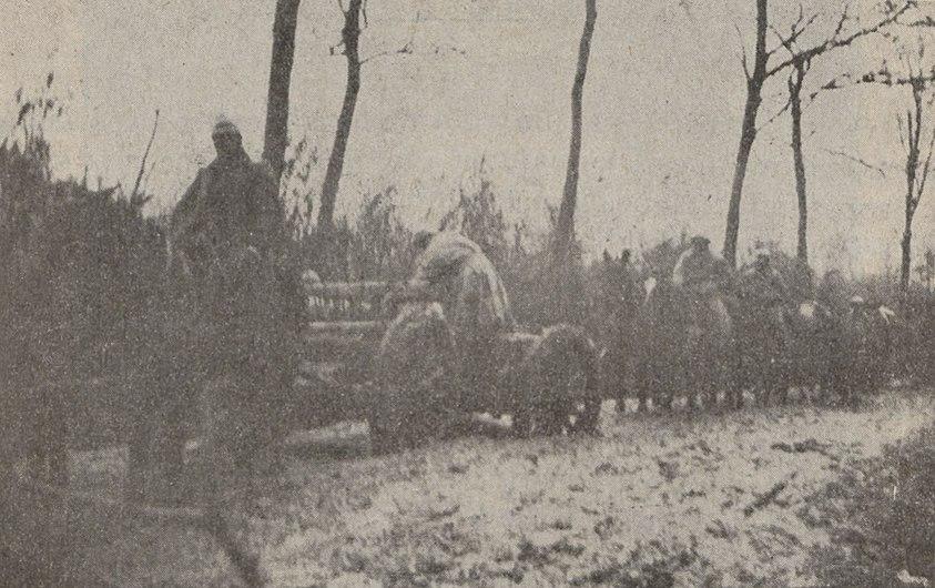 Convoi de ravitaillement du 33e RAC dans le bois d'Esnes en mai 1916.jpg
