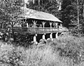 Covered bridge in Ravenna Park, Seattle, Washington, October 26, 1910 (LEE 245).jpeg