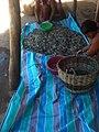 Crevettes d'Ambilobe.jpg