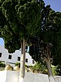 Cyclades Paros Langovardas Monastere Cloches 14092014 - panoramio.jpg