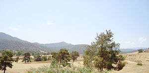 Geography of Cyprus - Cyprus countryside on the way to Troodos Mountains during the summer