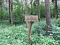 Dūkštų sen., Lithuania - panoramio (94).jpg