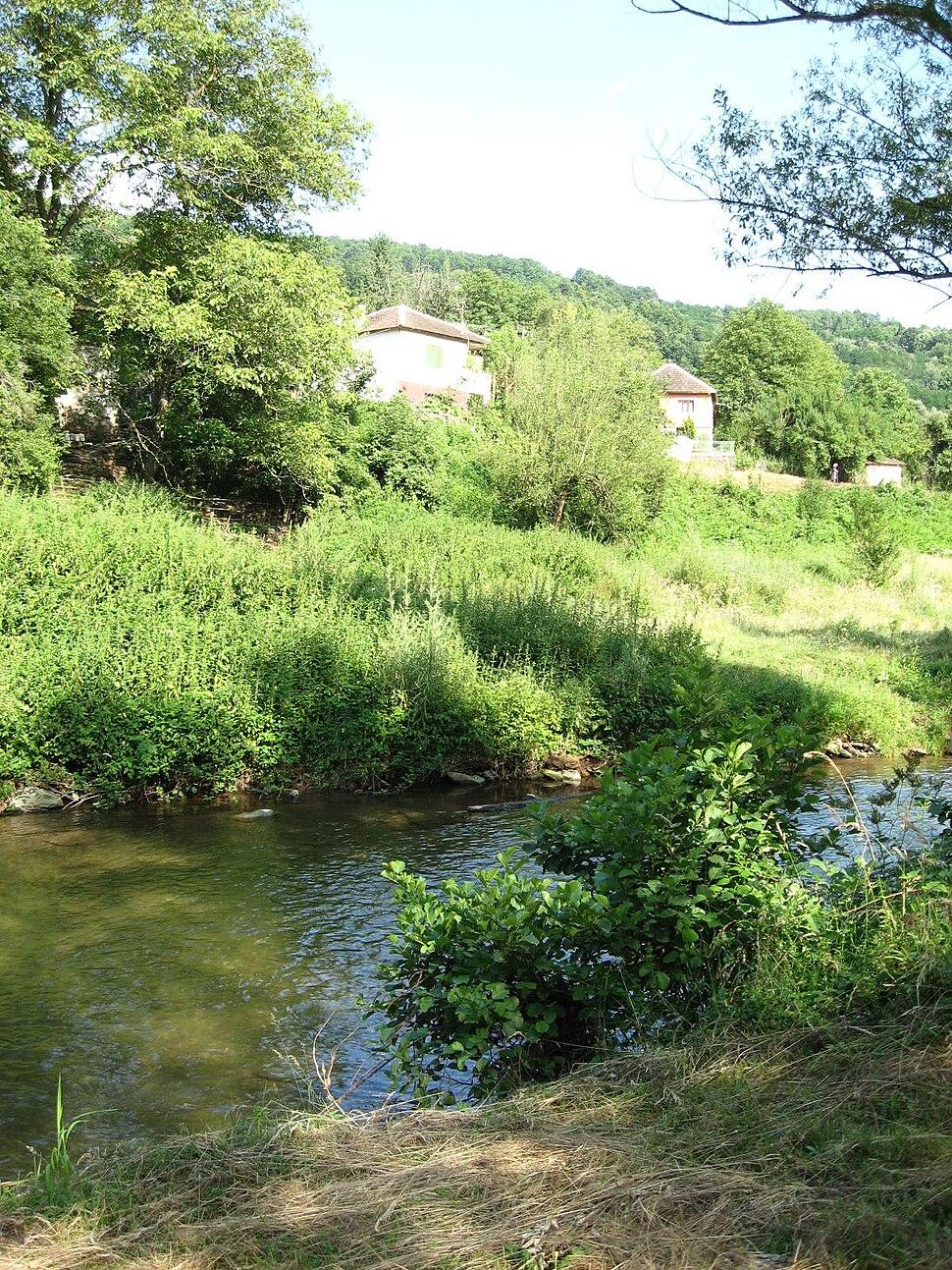 Dadince pogled sa reke