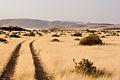 Damaraland Landscape (3689581825).jpg