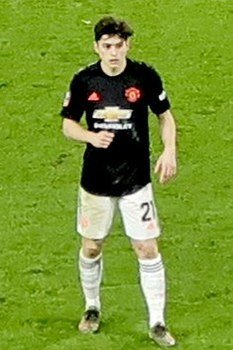 Daniel James Wolves vs Man U 2020-01-04 (cropped).jpg
