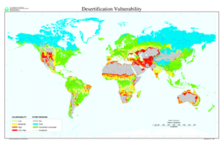 Desertification land degradation in which an area becomes a desert, losing its bodies of water, flora, and fauna, caused by climate change, overexploitation of soil, or other causes