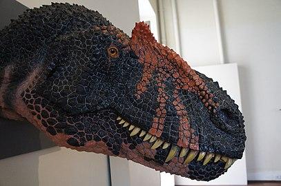 Detalhe de cabeça de reconstrução de dinossauro III.jpg
