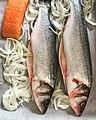 Deux bars entiers et un pavé de saumon avant cuisson au four.jpg