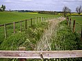 Ditch at Holdenby - geograph.org.uk - 446863.jpg