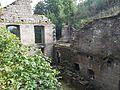 Dolní Žleb - ruina mlýna obr03.jpg
