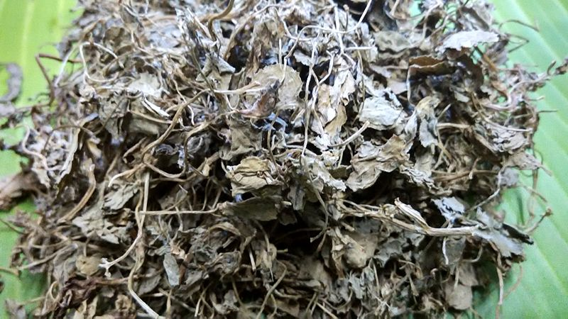 File:Dried leaves of Fenugreek-Kasuri Methi.jpg