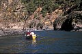 Drift, Jet Boat and Kayak on the Rogue River, Rogue River Siskiyou National Forest (23528419019).jpg