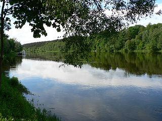 The river Nemunas at Druskininkai town