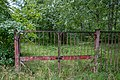 Dubrava Ščomyslickaja natural monument (Belarus) p10.jpg
