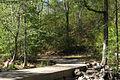DukeForest concreteBridge low water.jpg