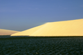 Dune in Jericoacoara.png