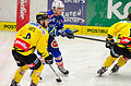 EBEL Play Off 2014 Viertelfinale EC VSV vs. UPC Vienna Capitals (13161633964).jpg