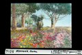 ETH-BIB-Monreale, Garten-Dia 247-05616.tif