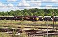 EWS 66196 Locomotive - geograph.org.uk - 2010064.jpg