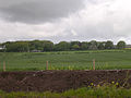 East Balmirmer from the A92 - geograph.org.uk - 13703.jpg