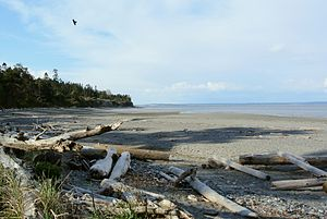 Marrowstone, Washington - East Beach Park, looking north towards Marrowstone Point