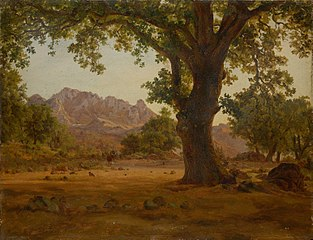 Oak Tree in a Mountainous Landscape