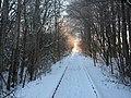 Eisenbahnstrecke NMS-PLÖ am Brachenfelder Gehölz - panoramio.jpg
