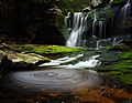 Elakala Waterfalls pub10 - West Virginia - ForestWander.jpg