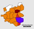 Erzurum2004Yerel.png